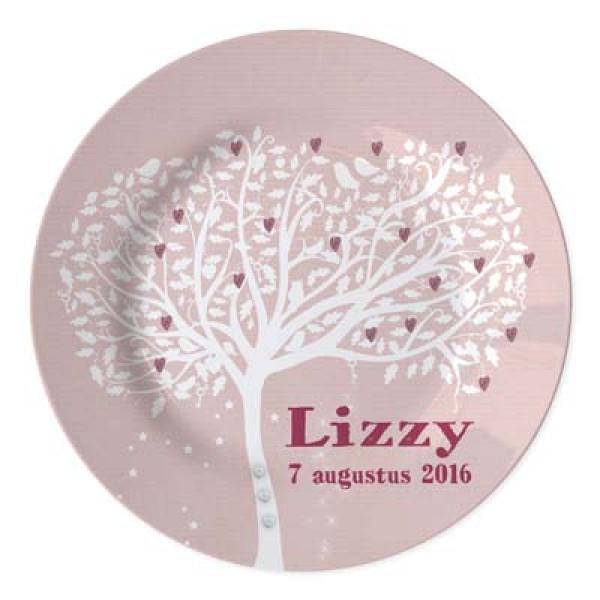 kraamcadeau meisje met naam en datum - plate for newborn with date of bith